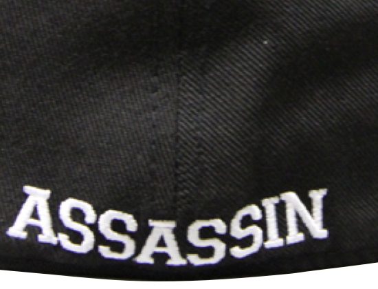 breezy-excursion-assassin-fitted-baseball-cap_002
